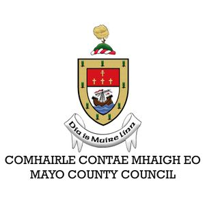 Richard Finn, Cathaoirleach of Mayo County Council