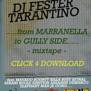FROM MARRANELLA TO GULLY SIDE 2009