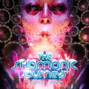 The Shamanic Journeys