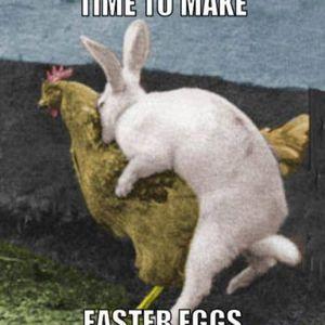 Saxo - Easter egg's set