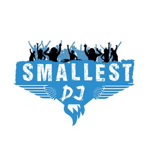 DJ Smallest - Electro-House, Dance mix 14