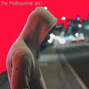 The Professional Vol.1