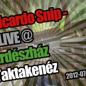 Ricardo Snip - Live @ Erdészház, Taktakenéz (2012.07.14.)
