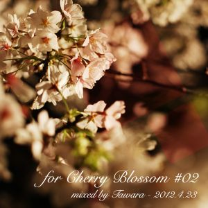 """for Cherry Blossom #02"" for FM KENTO 2012.4.23"
