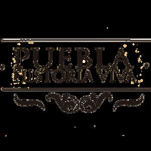 PUEBLA HISTORIA VIVA 21 12 16