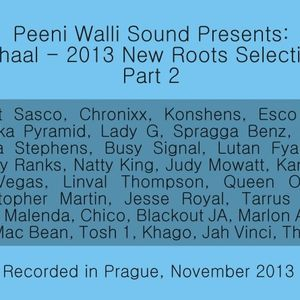 Mihaal - 2013 New Roots Selection - Part 2