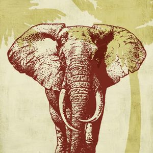 Cam W!LD - Safari Tour