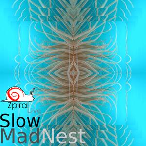Zpiral Live - Slow Mad Nest