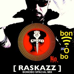 "RASKAZZ_""Bonobo Spacial Mix""_09.04.2013"