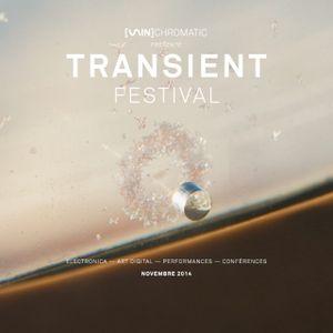 Trdlx x Hartzine - Transient Festival