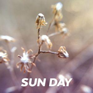 SUN DAY – 04