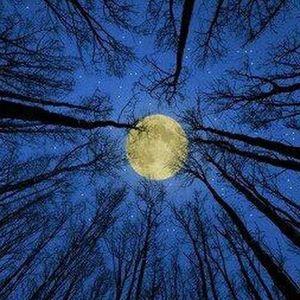 Full Moon Kiss - Ambient mix
