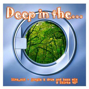 Deep In The... @ Stirka 40° - 07.01.08
