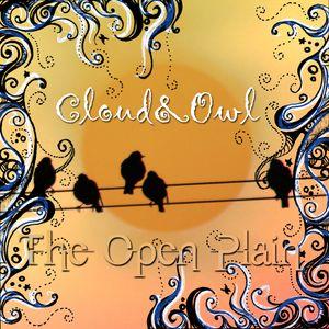 The Open Plain: Cloud & Owl's Festival Mix 2014
