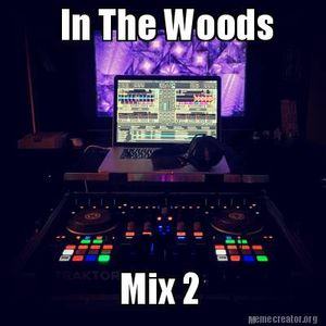 In The Woods Mix 2 (Progressive / Electro House Mix)