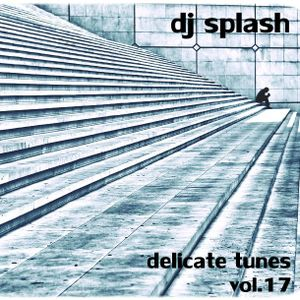 Dj Splash (Lynx Sharp) - Delicate tunes vol.17 2015