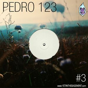 Yeti Mix #03 | Pedro 123