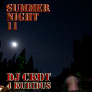 Summer Night '11