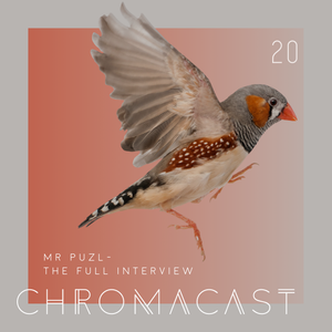 Chromacast 20 - MR PUZL - The Full Interview