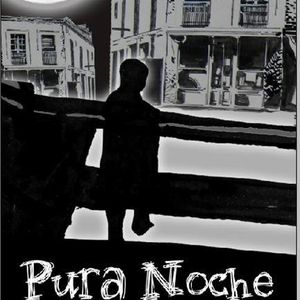 PURA NOCHE - PROGRAMA 12