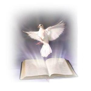 Sabiduría, discernimiento y fortaleza