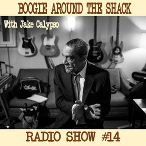 Boogie Around The Shack Radio Show #14