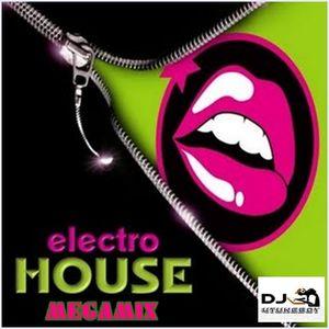 Electro House Megamix
