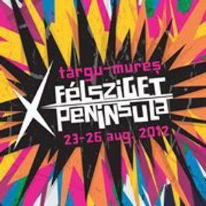 Horace Dan D. live @ Peninsula / Felsziget 2012 - part 1