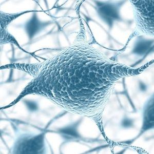 NeuroMelodies