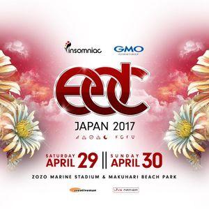 DT Live @ EDC 2017