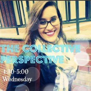 The Collective Perspective Ep. 7: The BGreen Project 11/27/14