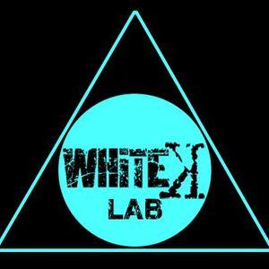 Whitek Lab 008 - giuseppe mulè 06/12/2014