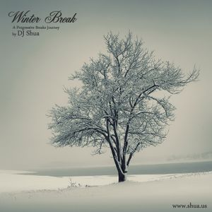 Winter Break - A Progressive Breaks Journey by Shua