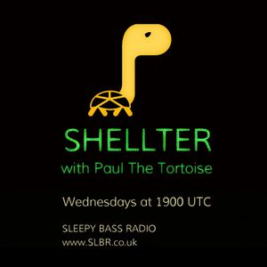 Shellter with Paul The Tortoise #2