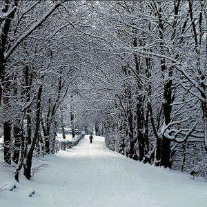 Weg mit dem Winter!
