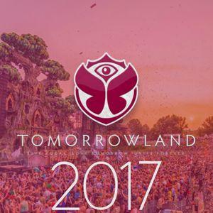 NWYR - Tomorrowland 2017 (Weekend 2)