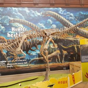 Dinosaurs of China Show - July 2017