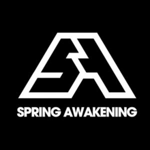 Hardwell live @ Spring Awakening Festival 2015 (Chicago, USA) - 12.06.2015