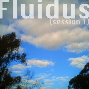 Fluidus (session 1)