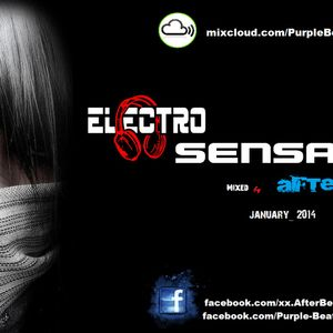 ElectroSensation_chapter_4_Mixed by_AFTER_BEAT_January_2014