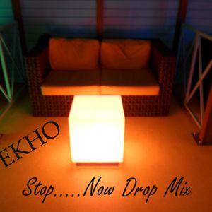 DJ Ekho - Stop...Now Drop Mix
