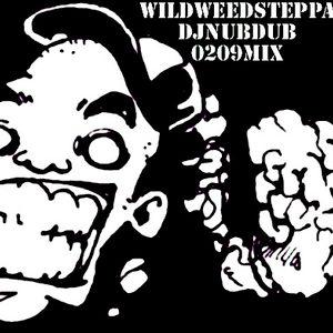 WILDWEEDSTEPPA