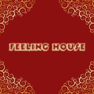 Feeling House