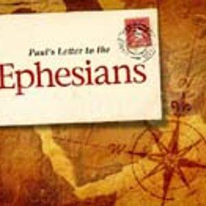 Predestination and Adoption