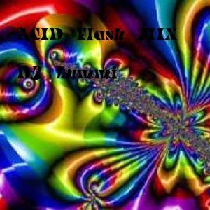 DJ Lummi @ Acid Flash