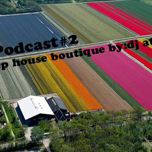 Podcast#2-Deep house boutique by:dj atlas 2014