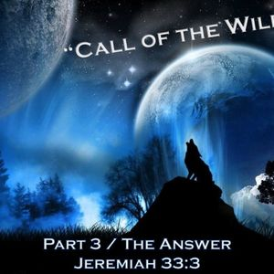 Call of The Wild (Part 3) - Audio