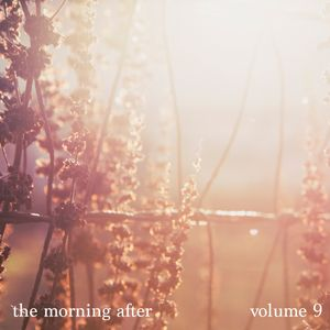 The Morning After volume 9 compiled by Žile Maravić