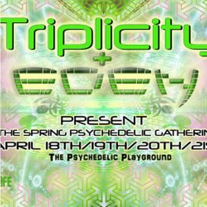 Twin Synthesis - Triplicity Set 2014