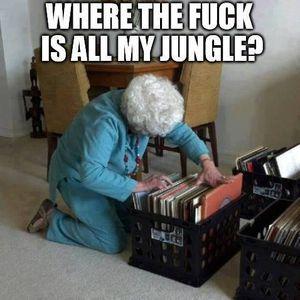 Jungle Jam Promo Mix (2013)